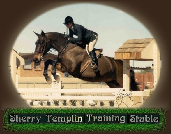 Sherry Templin Training Stable